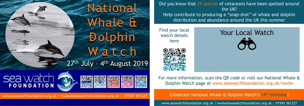 National Whale & Dolphin Watch 2019