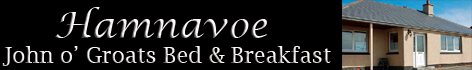 Hamnavoe logo. Copyright: Hamnavoe