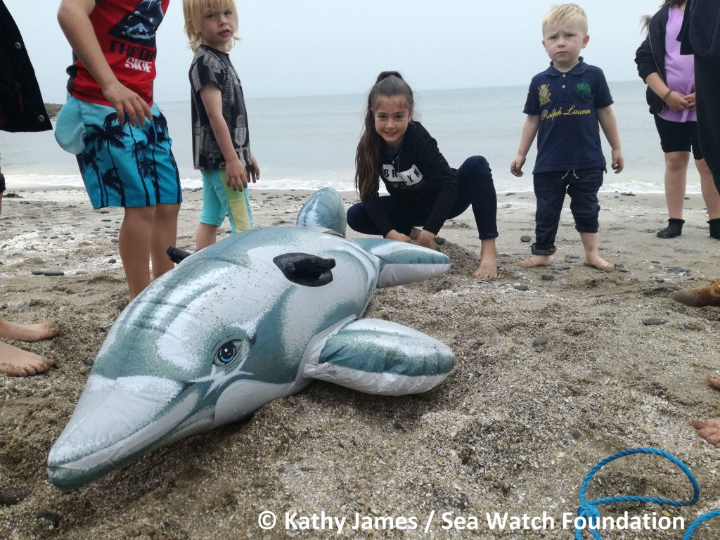 Outreach Event by Kathy James/Sea Watch Foundation