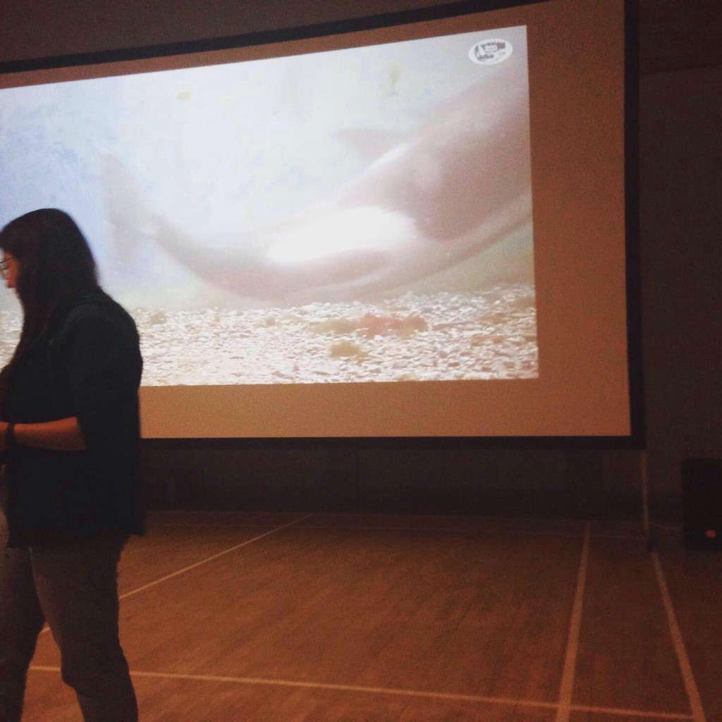 Megan Hockin-Bennett talking about orcas and OrcaLab. Copyright: