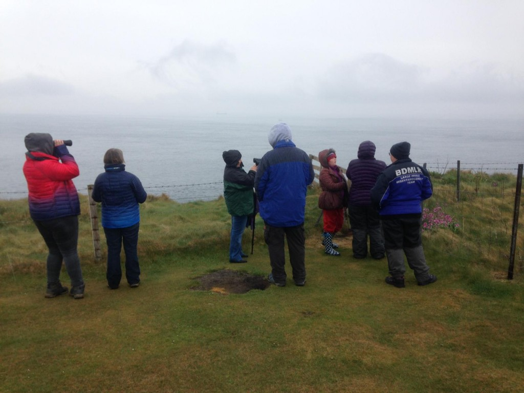 Orca Watchers at Duncansby Head. Copyright: Chiara G. Bertulli / Sea Watch Foundation