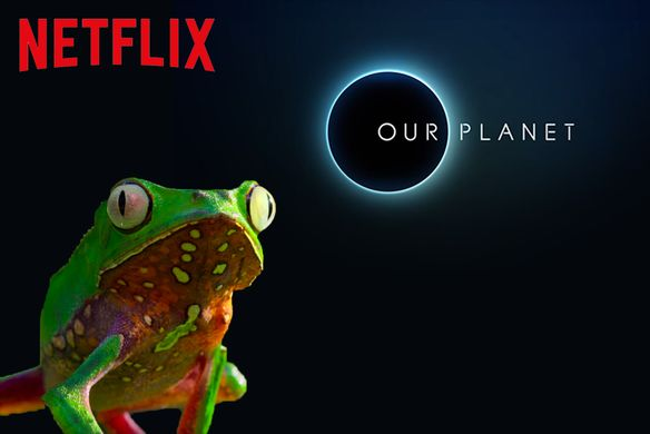 "Trailer Image for ""Our Planet/ Netflix"