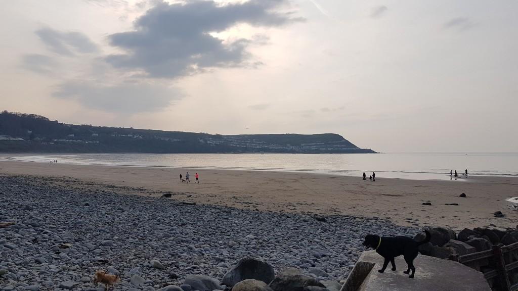 The perfect picnic spot? New Quay beach, Ceredigion/ Jaz Harker