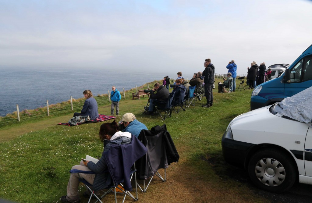 Orca watchers at Duncansby Head. Photo credit: Peter G.H.Evans / Sea Watch Foundation.