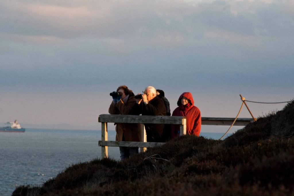Volunteer observers are vital to the SWF sightings network