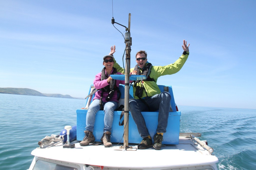 Join the Sea Watch team in surveying the Cardigan Bay Special Area of Conservation