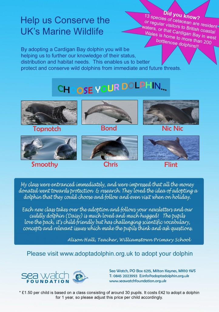 Adopt-a-dolphin