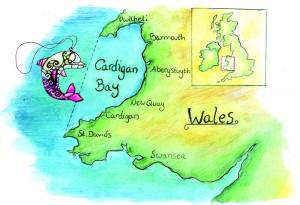 map_dolphsm