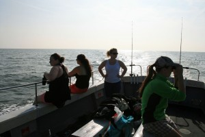 Our volunteers on last years Sea Changers project.