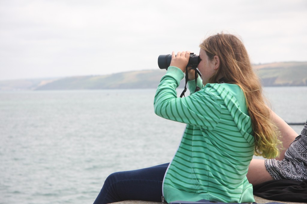 Imogen busy spotting dolphins