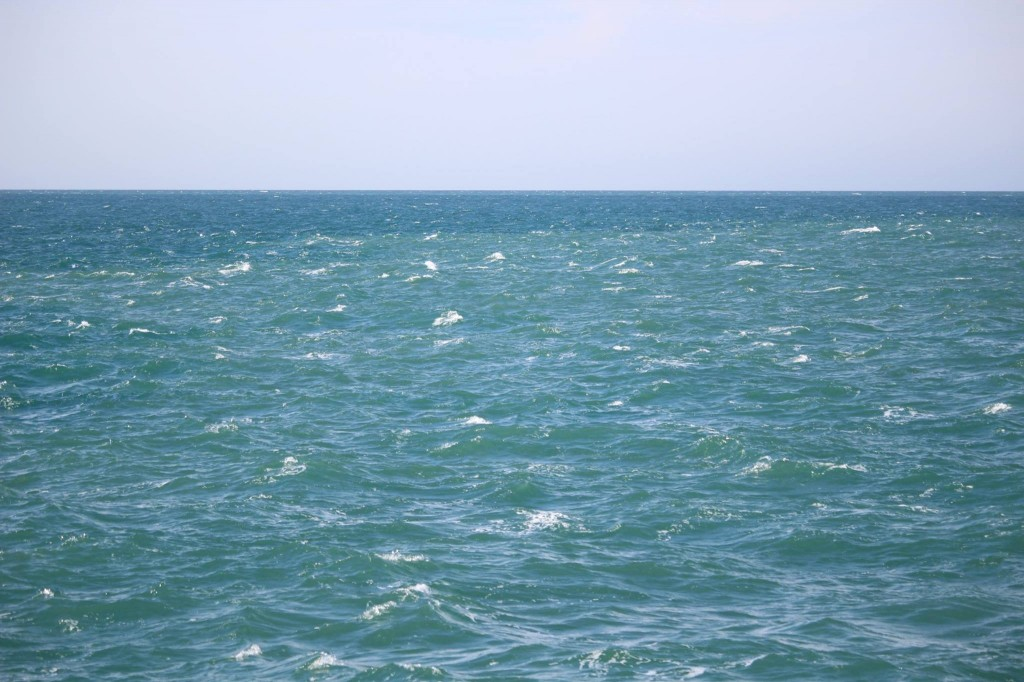 Tidal fronts