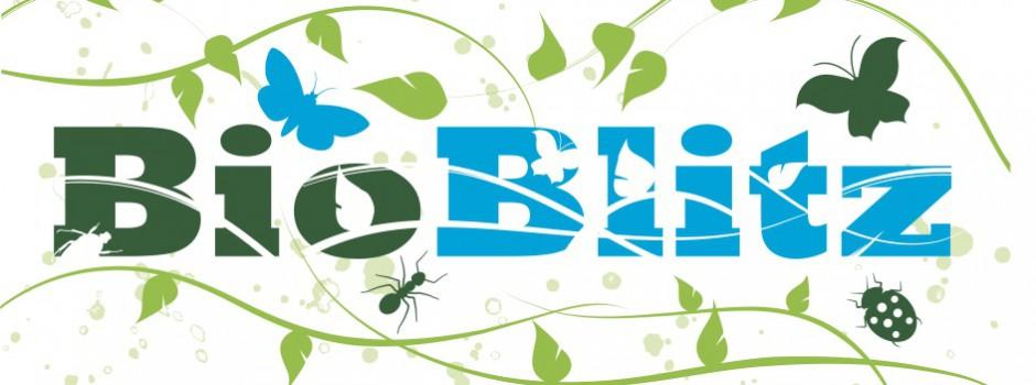 BioBlitzflowerlogo-940x350