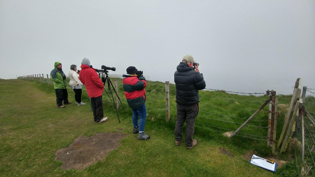 Keen watchers at Duncansby Head. Photo credits: Chloe Robinson/ Sea Watch Foundation