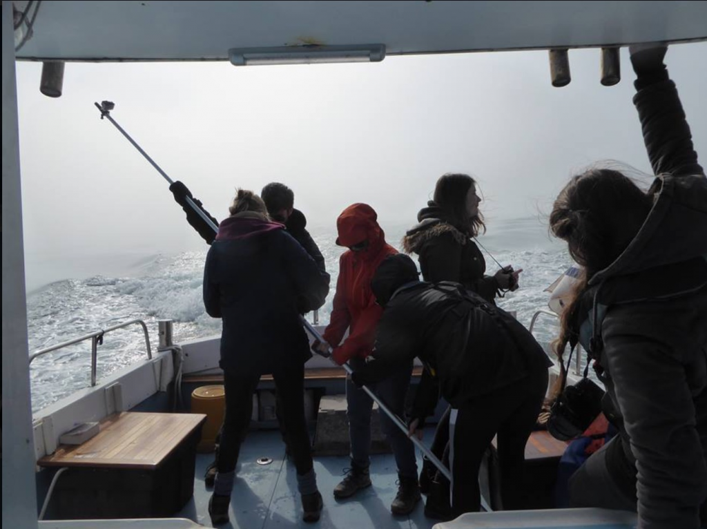 At Seawatch we go out on line transects and tourist boats to collect data on the local cetaceans around West Wales. This is us on a recent survey where we saw a pod of 15 dolphins which were recognised by our monitoring officer as a group from previous years. Picture curtsey of Katrin Lohrengal.