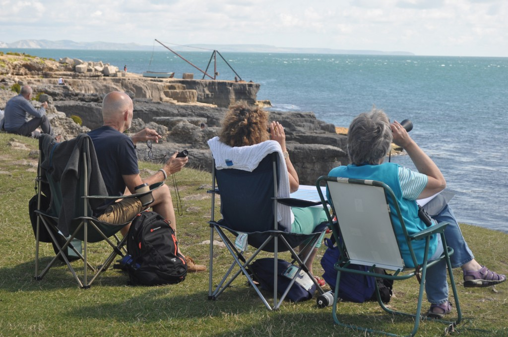 Sea spotters conducting a land watch in Dorset. Photo credit: Catherine de Bertrand / Sea Watch Foundation