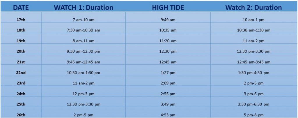 Duncansby Head time Schedule for land-watches